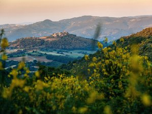 8 Days Yoga Retreat in Italy with  Katie Silcox