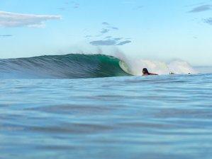 8 Days Guided Surf Camp in Santa Teresa, Puntarenas Province, Costa Rica