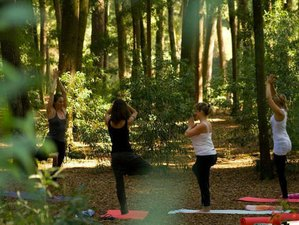 15 Day 200-Hour Yoga Teacher Training in Christina Lake, British Columbia