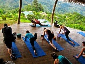8 días retiro de yoga y comida orgánica, Costa Rica