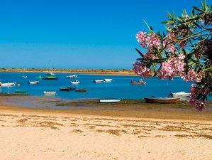 2 Days Clam Cooking Holiday at Conrad Algarve, Portugal