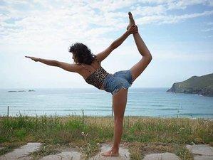 11 jours en retraite de yoga et méditation tropicale à Puntarenas, Costa Rica