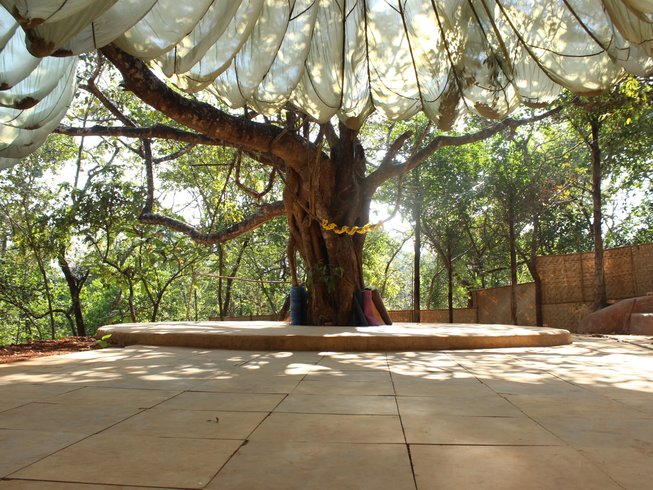 11-Daagse Muziek, Creativiteit en Yoga Retraite in Goa, India