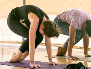 29 Days 300-Hour Yoga Teacher Training in Goa at Patnem beach, India