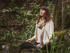 28 Days Nature Based Embodied Flow™ Yoga Teacher Training in Golden Bay, New Zealand