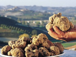 4 Day Truffle Tour and Cooking Holiday in Sanremo, Liguria Riviera and Cote d'Azur