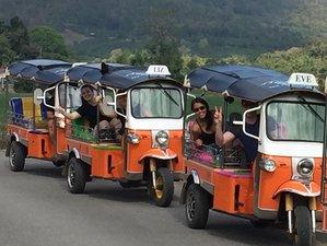 5 Day Guided Tuk Tuk Adventure in Doi Inthanon, Thailand