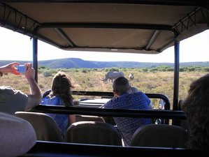 3 Days Amakhala and Shamwari Safari South Africa