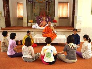 11 Days Sacred Meditation and Yoga Retreat India