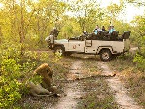 5 Days Luxury Safari in Sabi Sands Game Reserve, South Africa