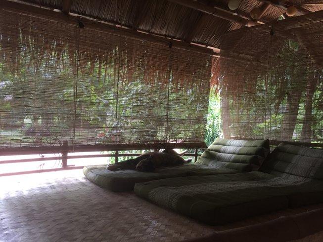 8-Daagse Meditatie en Yoga Retraite in Chiang Mai, Thailand