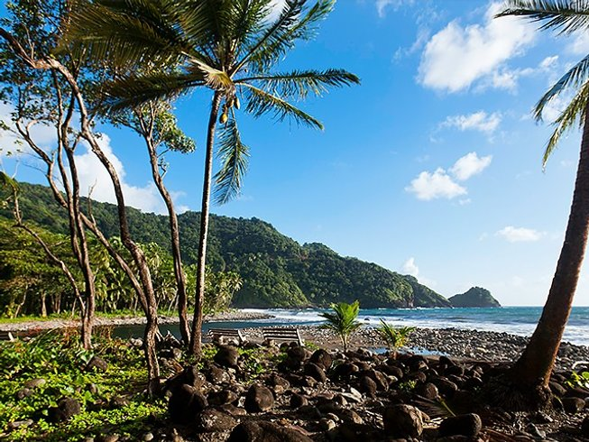8 Days Wellness and Yoga Retreat Dominica
