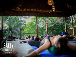 11 Day Surf, Meditation, and Yoga Holiday in Hiriketiya, Matara