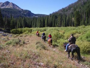 10 Days Ranch Holiday with Horseback Riding, and Nature Viewing in Jackson, Wyoming