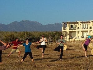 7 Days Radical Renewal and Yoga Retreat in Cabo San Lucas, Mexico