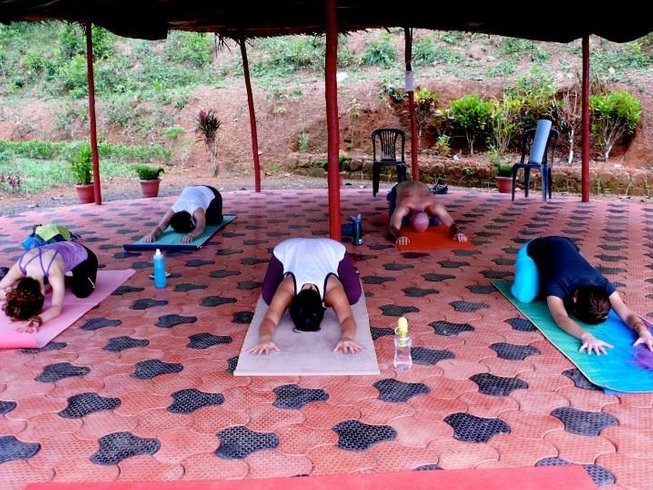 9 Days Ayurveda and Yoga Retreat in Kerala, India