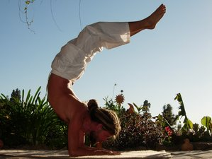 8 Day Private and Intensive Yoga Retreat with Raw Food for 2 Guests on La Palma, Canary Islands