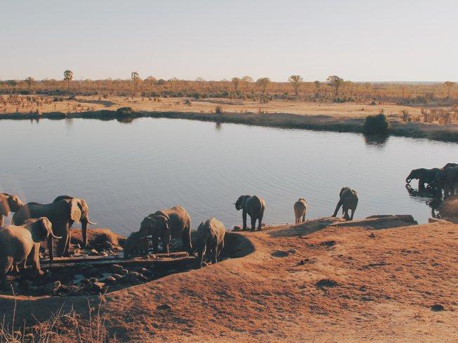 Multi-country: Zimbabwe & Botswana