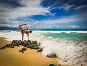 20 Day Hatha and Vinyasa 200-Hour Yoga Teacher Training in Maui, Hawaii