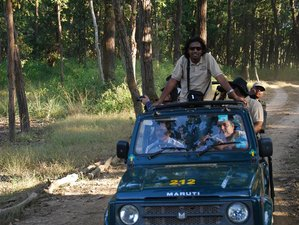 3 Days Pench National Park and Nagzira Safari in India