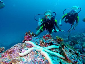 3 Day Experience Discover Scuba Diving in the Beautiful Huraa Island, North Male Atoll