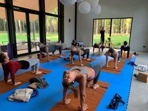 5 Day Silent Mindfulness Meditation and Yoga Retreat in Hiiumaa