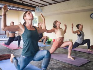 12 Day 100-Hour Vinyasa/ Hatha/ Ashtanga Yoga Teacher Training in Ubud, Bali