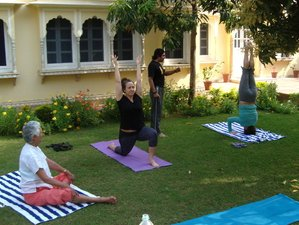 12 Days Cultural Tour and Yoga Retreat in Himalaya, India