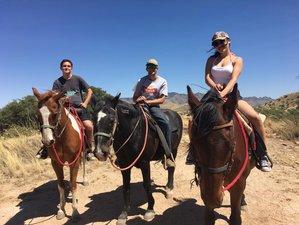 4 Days Amazing Ranch Vacation in Arizona, USA
