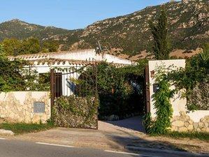 8 Days Solanas-Villasimius Juice Detox Retreat in Sardinia, Italy