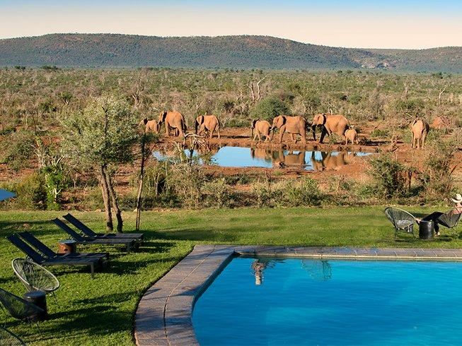 4 Days Family Safari South Africa