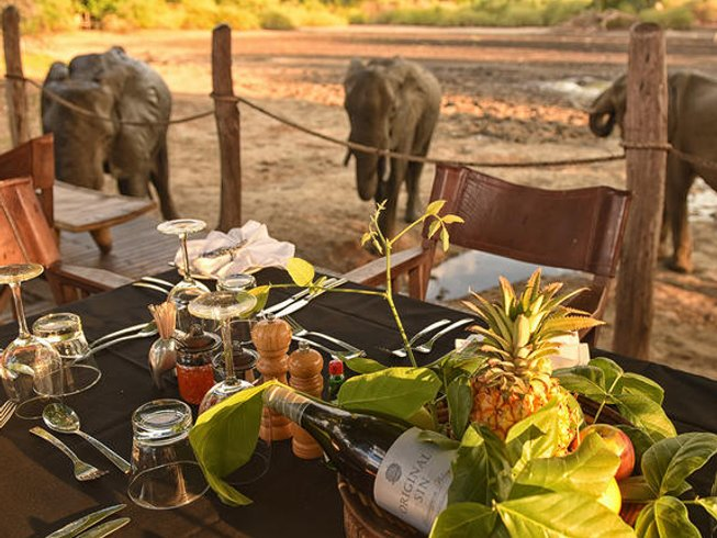 12 Days Thrilling Safari in Zimbabwe