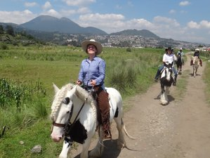 8 Day Ajusco Volcanoes and Wilderness Adventures and Ranch Vacation in Mexico City