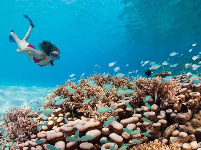 5 Days Luxury Surf in Maldives