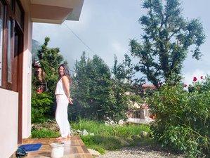 33 días de profesorado de yoga Ashtanga Vinyasa de 300 horas en Dharamshala, India