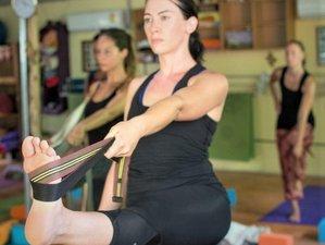13 Days Module One 100 Hours Yoga Teacher Training in Krabi, Thailand