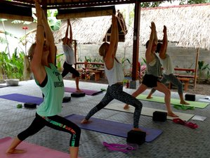 22 Days 200-Hour Yoga Teacher Training in Lembongan, Bali