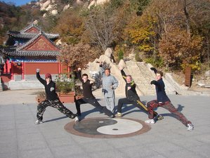 6 Months Chinese Kung Fu Training in Kunyu mountains Shandong province