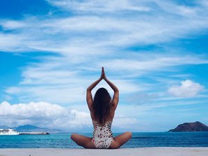 15 Days 200-Hour Vinyasa Flow Yoga Teacher Training in Fuerteventura, Spain