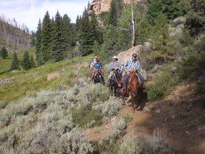 3 Days Toquer Lake Horseback Pack Trip in Utah, USA