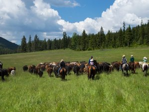 4 Days Exceptional Ranch Vacation in Washington, USA