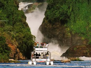 3 Days Safari in Murchison Falls National Park, Uganda