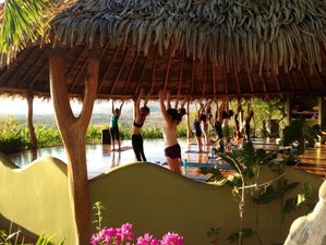 6 Days Pura Vida Costa Rica Yoga Retreat