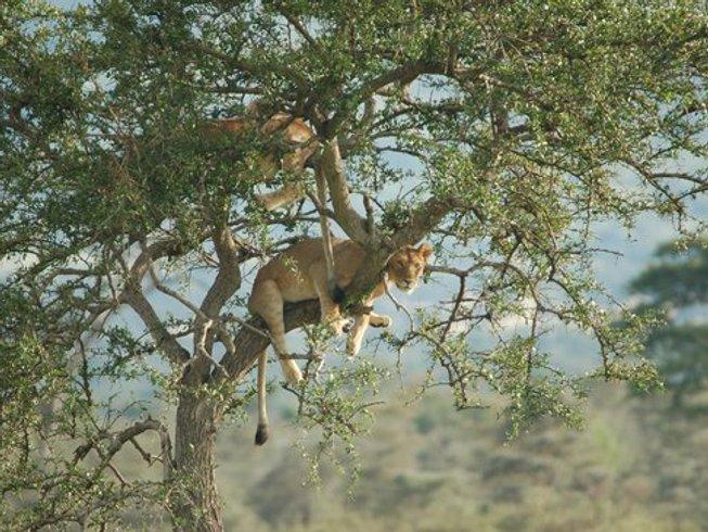 6 Days Camping Safari in Tanzania