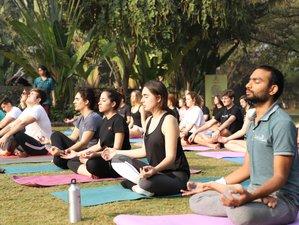 15 Day Flexible 200-Hour 1-to-1 Online Yoga Teacher Training