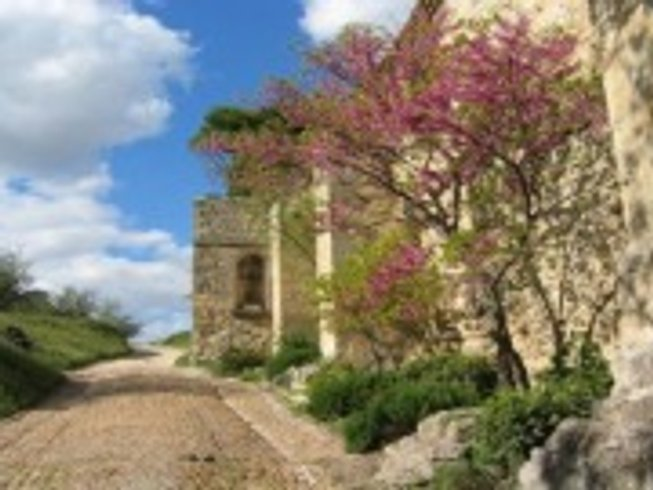 7 Days Provence Wine Tasting and Cooking Vacation