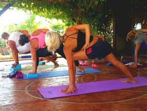 11 Days Authentic Yoga Retreat India