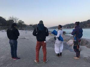 7 Days Beginner's Yoga and Meditation Retreats in Rishikesh, India