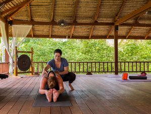 29 Days Muay Thai Training with Yoga Retreat in Phuket, Thailand