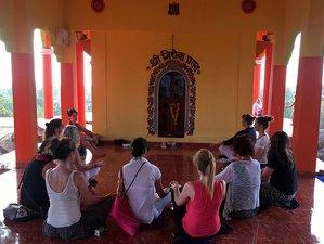 7 Days Bhakti Yoga Retreat in Goa, India